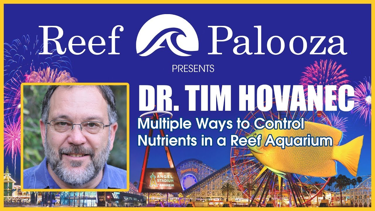 Dr. Tim Hovanec: Multiple Ways to Control Nutrients in a Reef Aquarium | Reef-A-Palooza 2018 Thumbnail