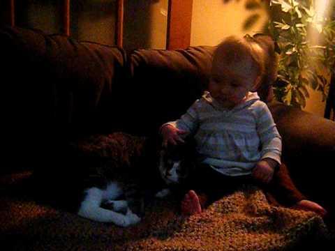 petting her kitten