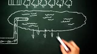 FMF 52312 Chalkboard Teacher Spanish