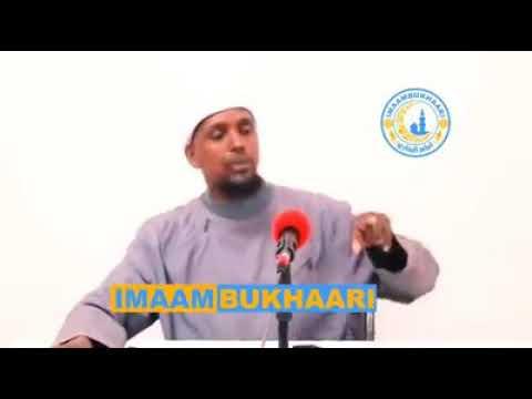 M A SHIEKH QAALI AH