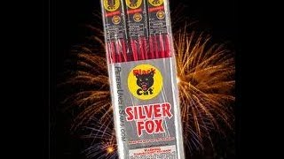 Year 2- Silver Fox Bottle Rockets- Black Cat |HD|
