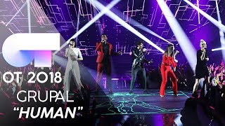 """HUMAN"" | GRUPAL | GALA 12 | OT 2018"