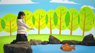 うとうとしながら池の鯉を見つめる朝長美桜 カクンと眠気に耐え切れず池...