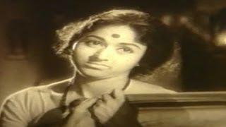 Baalu Belagithu–Kannada Movie Songs | Cheluvada Muddada Video Song | Rajkumar | TVNXT