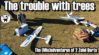 The trouble with trees: The (Mis)Adventures of 2 Zohd Darts (and a wing)
