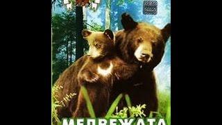 Медвежата. Почти медведи.