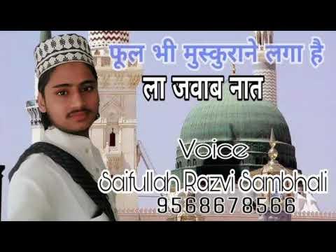Saifullah Razvi Sambhali 2018 Naat//Fool Bhi Muskurane Laga Hai//By Barkati Network