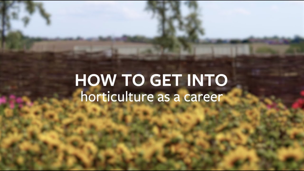 Discover What Horticultural Careers Are Available To You
