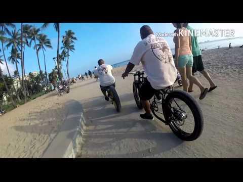 Eazy Rydaz BC Hawai'i