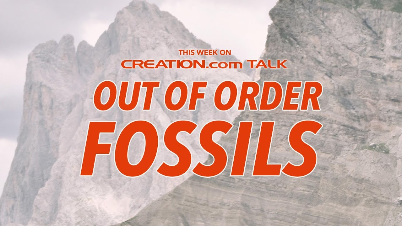 Out of Order Fossils