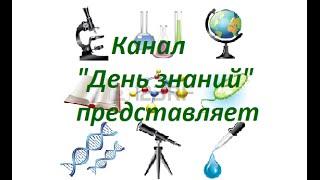 """Канал """"День знаний"""" представляет! Выпуск №1."""