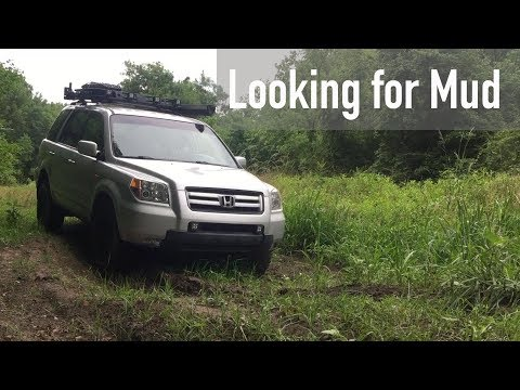Looking For Mud