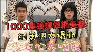 【狠愛演】網美們大暴動,1000隻蟑螂做網美牆 「少女心大噴發」