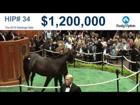 Before They Were Stars: G1 winner TAPWRIT at the 2015 Saratoga Sale