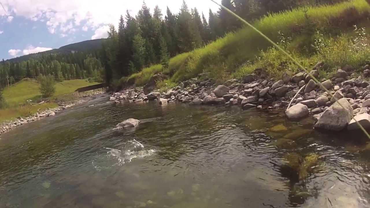 Fernie b c small stream fly fishing youtube for Small stream fly fishing