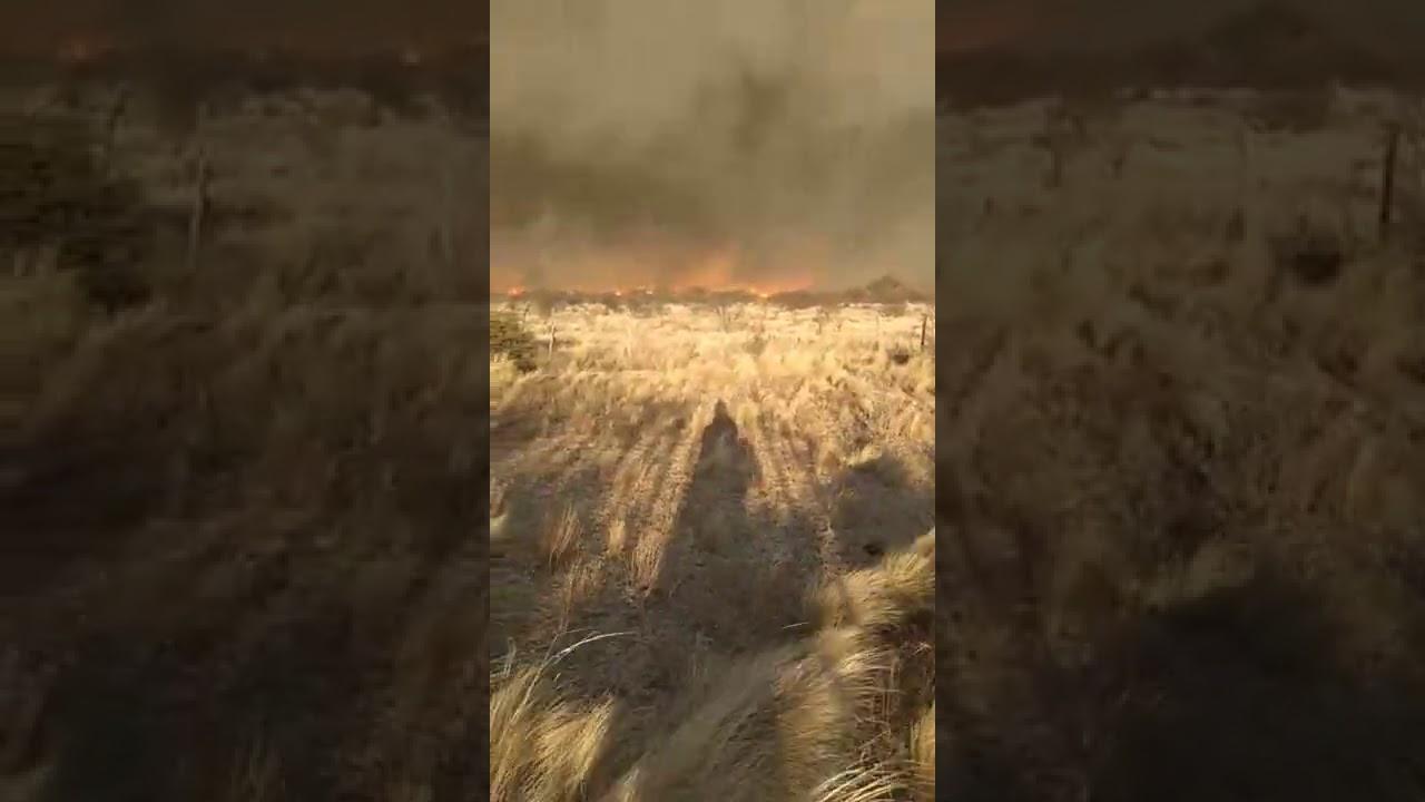 Incendio en la zona de Villa Viso