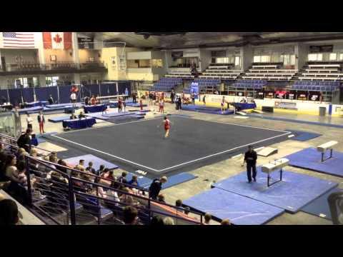 texas boys gymnastics state meet