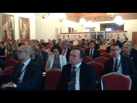 Panel II. Reality Check: Reassessing the Security Situation in the Baltic Sea Region (BSR)