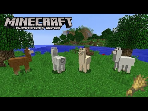 minecraft-tutorial-series-s1-e1:-what-do-llamas-eat-on-minecraft-!!!!!