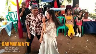 Download Mp3 Hayam Ngupuk | Si Bapa Jogedna Mantap | Masih Teh Ai Si Penyanyi Gokil