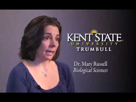 Kent State University at Trumbull - 2010 - Dr. Mary Russell