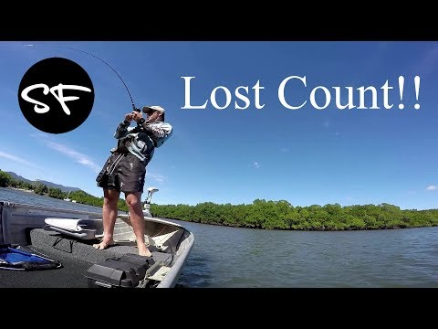 Cairns Inlet Fishing/Flicking Lures - Ep 15