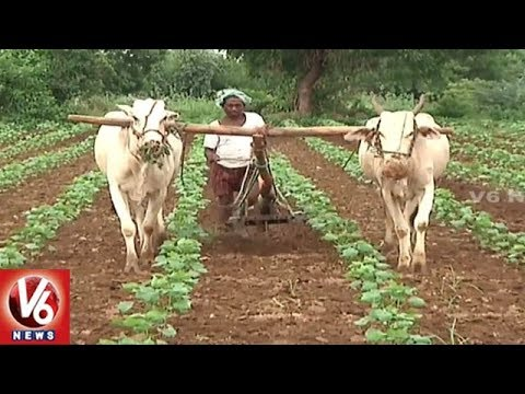 Khammam District Farmers In Concern With Lack Of Subsidized Agricultural Machinery | V6 News