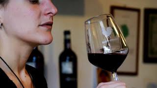 видео Шампанское «Santo Stefano» (Санто Стефано), виды