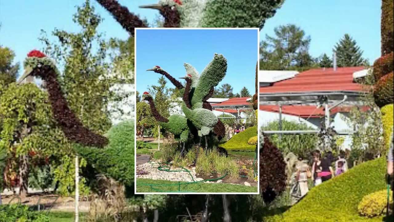 Jardin botanique de Montréal en 2013 - YouTube