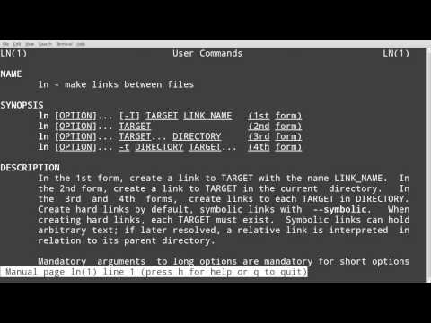 Linux make file executable from anywhere