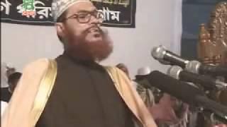 আল্লামা দেলাওয়ার হোসাইন সাঈদীর সুন্দর একটি ওয়াজ thumbnail
