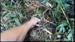 Expedição a Serra da Cantareira - Detectando Metais - Acidente Aéreo Mamonas Assassinas