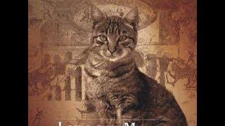Voyage initiatique avec les chats entretien avec Laila Del Monte