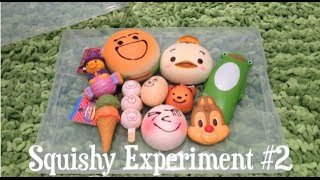 Squishy Experiment #2