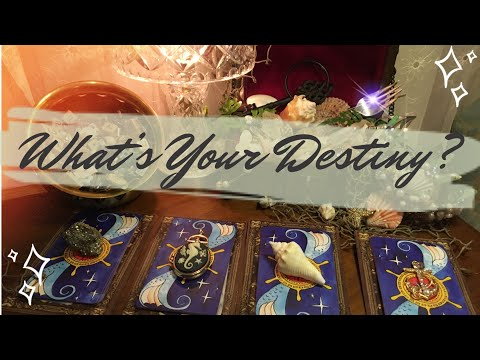 Pick a Card 🔮 What Is Your Destiny ? - YouTube