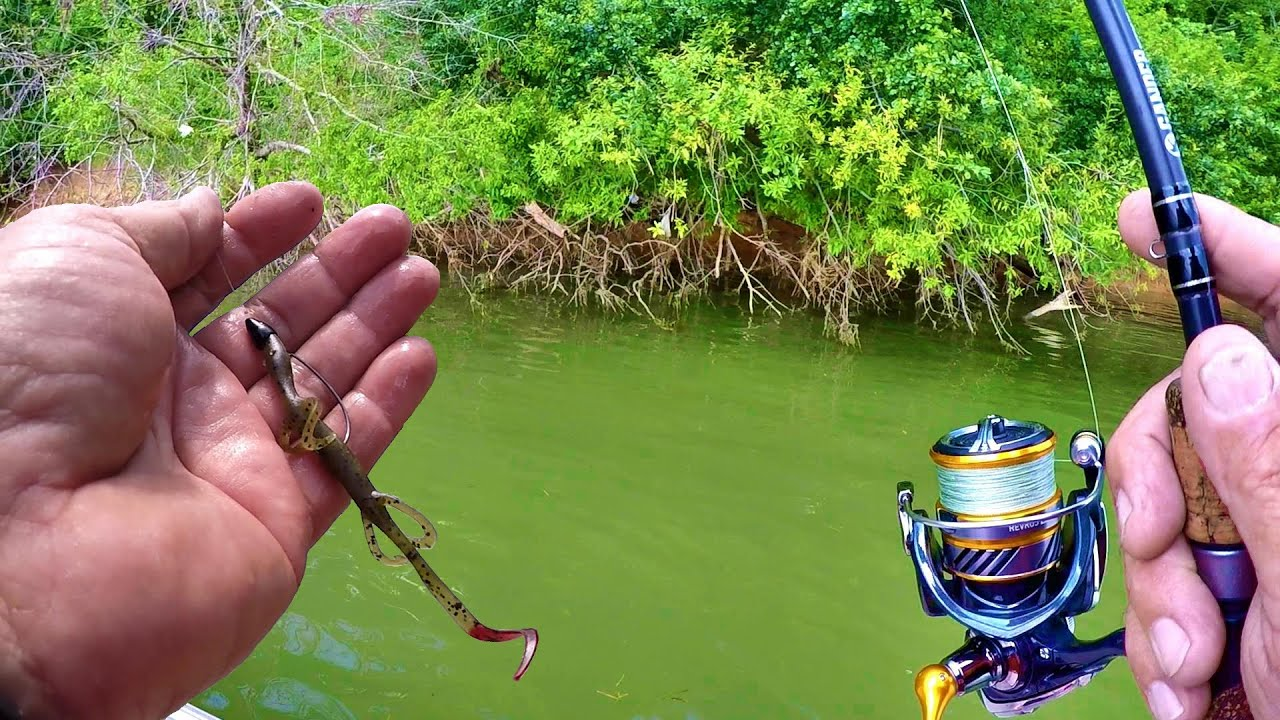 BASS FISHING SECRETS!!! Tips and Tricks For Catching More Fish!