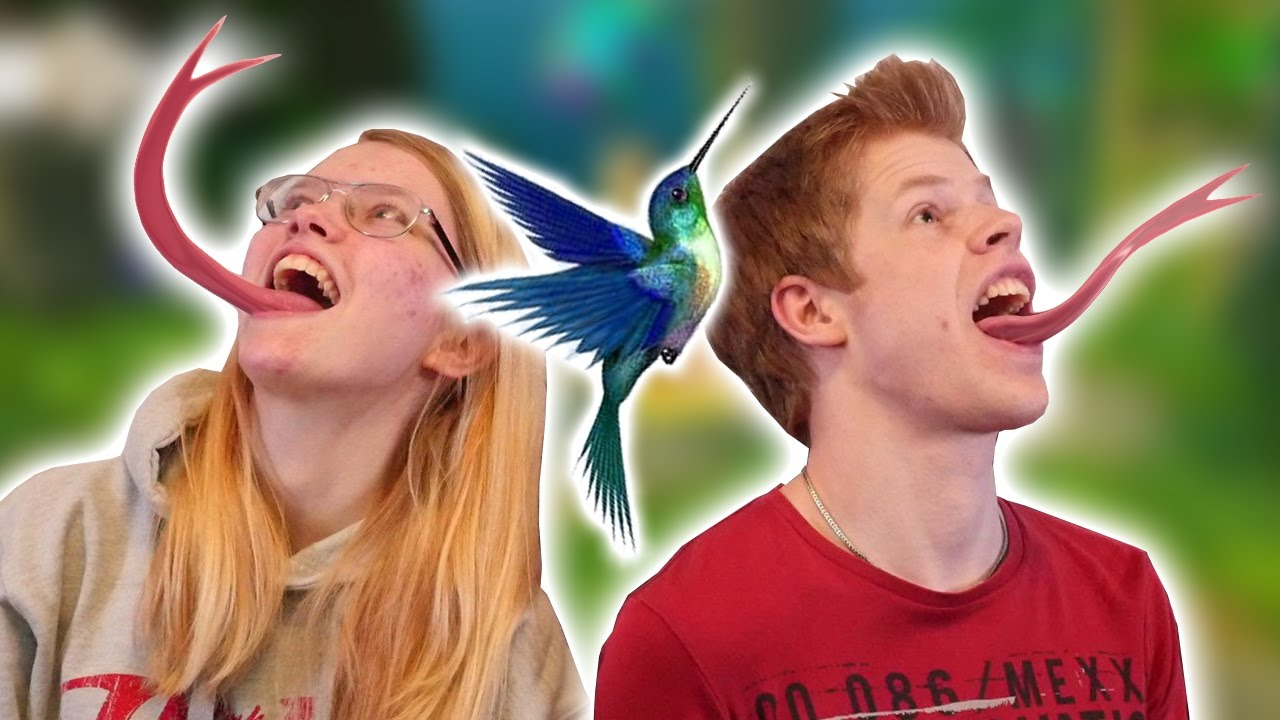 fågel dating