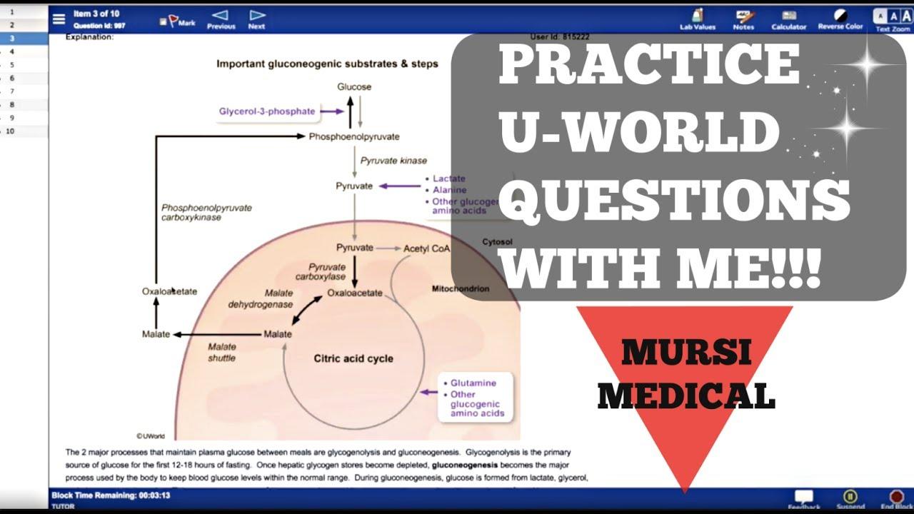 Get PDF USMLE STEP 1 Review Questions Statistics
