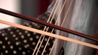 Gambar cover Furor Musicus - Jacobus Nozeman/ from: Sonates opus 2: Largo e cantabile