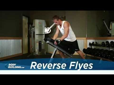 Reverse Flyes - Shoulder Exercise - Bodybuilding.com