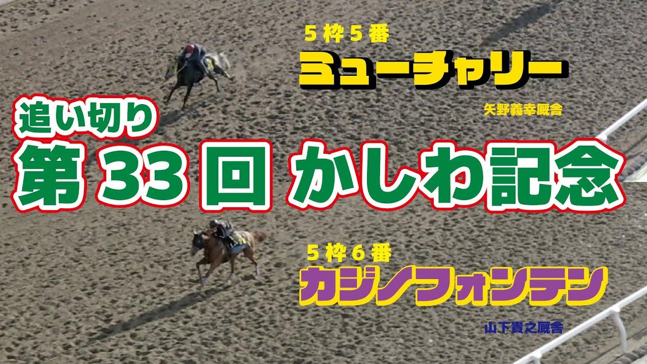 【かしわ記念】カジノフォンテン&ミューチャリー 追い切り【船橋競馬】【ドローン】