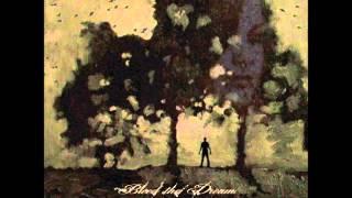 Bleed The Dream - Broken Wings