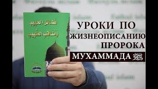 Фазаилюль Хабиб - Жизнеописание пророка صلى الله عليه وسلم | Урок 19 | Фатхуль Ислам