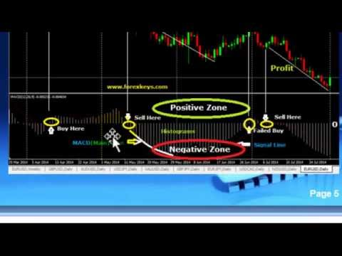 How to use indicators in forex trading