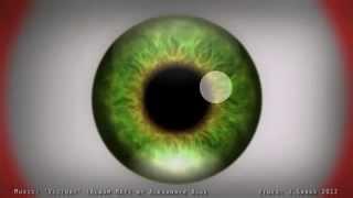 Иллюзия, которая вызывает временные галюцинации(https://www.youtube.com/watch?v=PR15sS4935w Ещё больше видео на http://chirpi.ru., 2013-02-23T08:51:32.000Z)