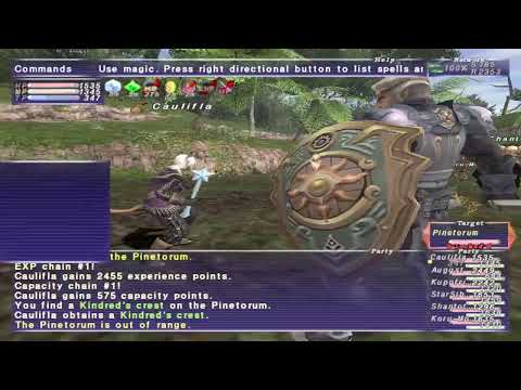FFXI Livestream Replay: Leveling DNC and BLM to 99