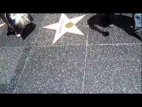 Hollywood Walk of Fame, Hollywood Blvd, Kodak Theater - Los Angeles, CA