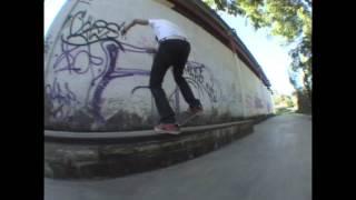Reactor Skateboards - El Pinshi Cale - Jaime Corp