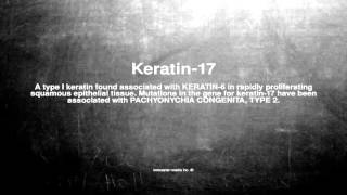 Medical vocabulary: What does Keratin-17 mean