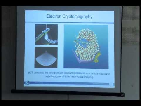 L19: The EMBO Global Exchange Lecture Series